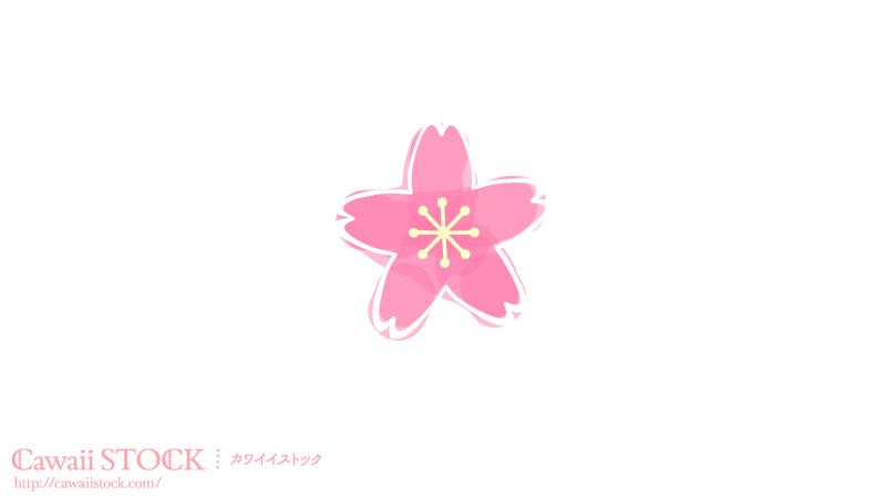 sakura_sam